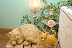 ペルシャ猫のお店