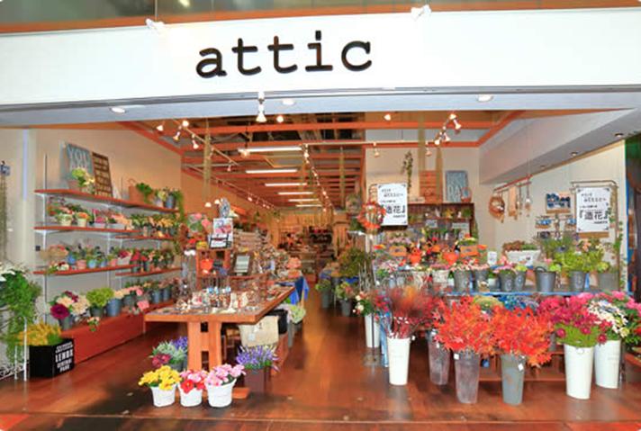 attic アティック